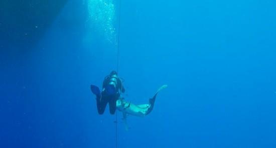 驚險!奧地利男子紅海潛水被鯊魚咬腿死裡逃生