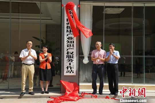 海南省医疗健康产业知识产权服务工作站揭牌成立。 张茜翼 摄