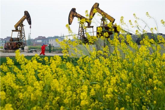 江苏兴化:花海油田绿色开采