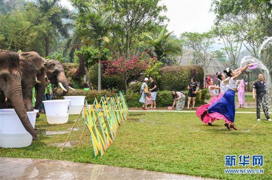 (社会)(4)大象泼水庆傣历新年