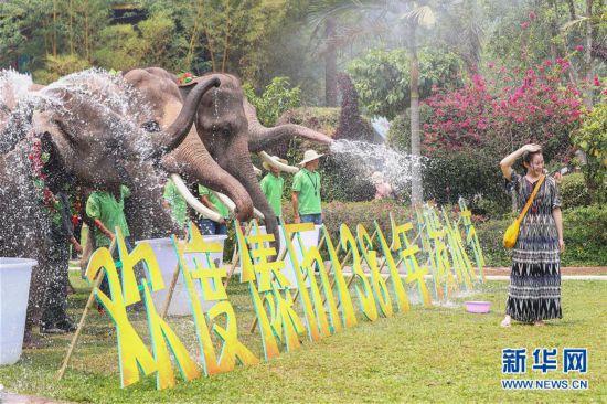 (社会)(2)大象泼水庆傣历新年