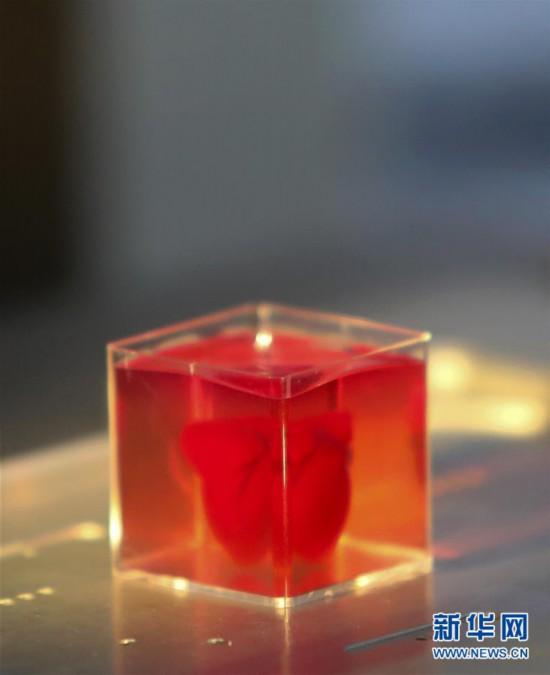 """(國際)(1)以色列研究人員稱3D打印出全球首顆""""完整""""心臟"""