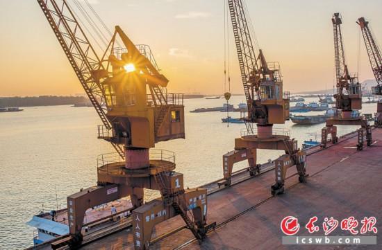 2019年4月12日,落日余晖洒落在新港码头的吊塔上,繁忙的港口趋于平静,满载的轮船相继驶向远方。