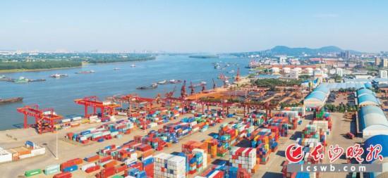 2019年4月16日,俯瞰镜头中,五颜六色的集装箱运送到新港码头,并从这里启程,经水运到达世界各地。