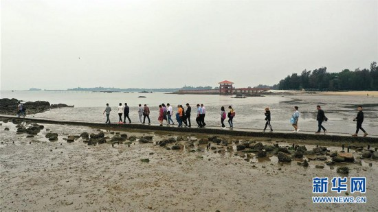 (社会)(5)广西三娘湾景区迎来旅游热
