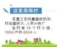 """农村人居环境整治走在全市前列 天涯""""梅村""""变""""美村"""""""
