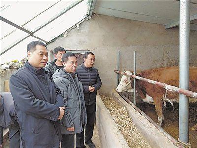 <p>  蓝主保(右二)和许坤煌(左一)在海原县三河镇入户了解贫困户发展养殖产业情况。</p>