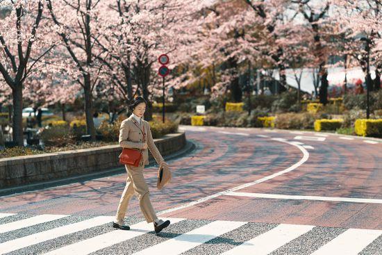 抓住春天的尾巴!江一燕邂逅浪漫樱花