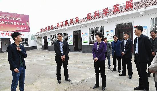 李淑侠:打造最优营商环境 助推企业高质量发展
