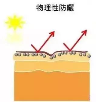 夏天来了!教你4招 分清化学防晒和物理防晒