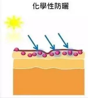 夏天來了!教你4招 分清化學防曬和物理防曬