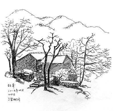 梨树简笔画大图
