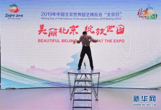 """""""小院落""""里的""""大北京""""——北京世园会""""北京日""""活动综述"""