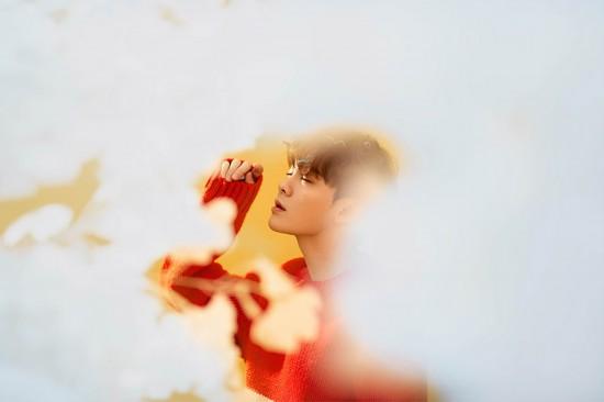 尤长靖梦幻大片 少年与花温柔浪漫