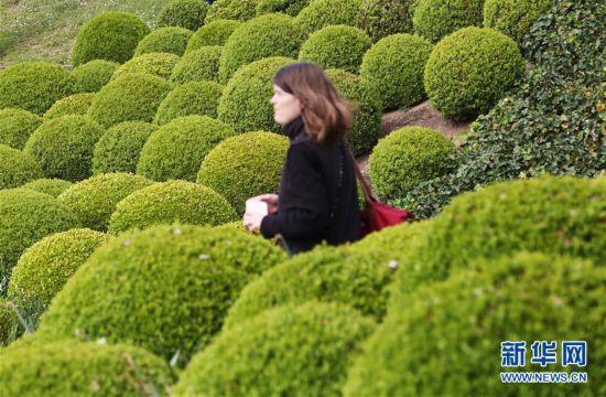 (国际)(3)法式花园里的几何学