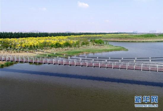 """(环境)(3)天津:郊野公园变""""城市氧吧"""""""