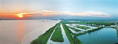 """区域水环境治理见效 泰州擦亮""""水城水乡""""名片"""