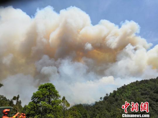 图为火灾现场。云南森林消防总队供图