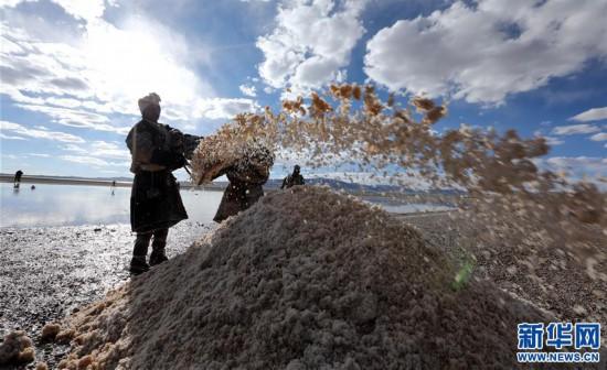 (专发新华网西藏频道)(图文互动)天边的驮盐队――藏北牧人远去的背影(14)