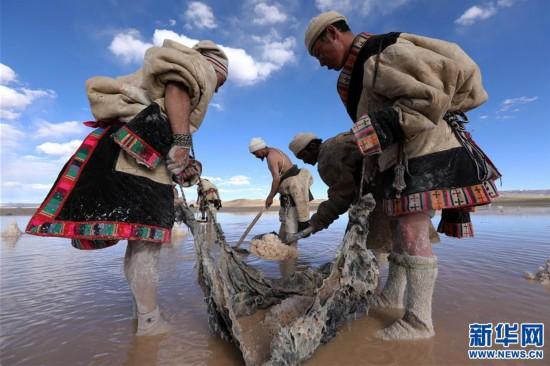 (专发新华网西藏频道)(图文互动)天边的驮盐队――藏北牧人远去的背影(13)