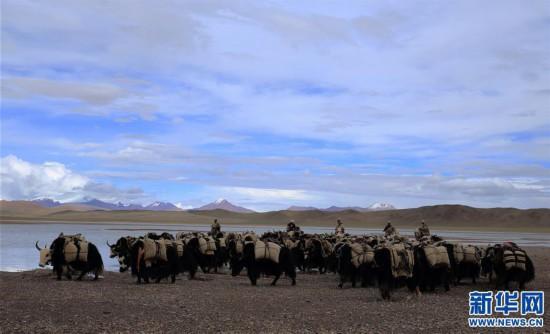 (专发新华网西藏频道)(图文互动)天边的驮盐队――藏北牧人远去的背影(3)