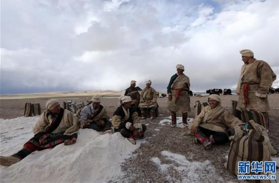 (专发新华网西藏频道)(图文互动)天边的驮盐队――藏北牧人远去的背影(15)