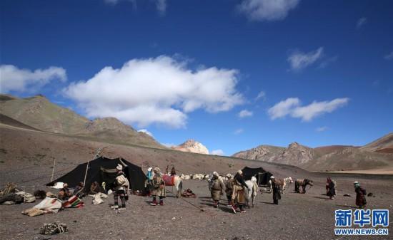 (专发新华网西藏频道)(图文互动)天边的驮盐队――藏北牧人远去的背影(24)