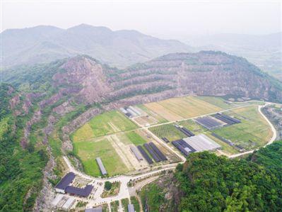废弃矿山变身现代农业园