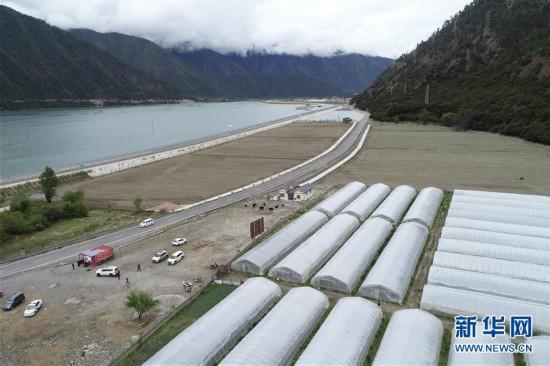 """(经济)(1)西藏林芝:川藏公路旁的""""甜蜜""""产业"""