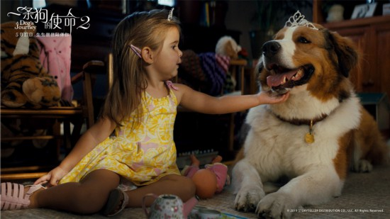 《一条狗的使命2》曝终极预告 小狗用四世守护女孩成长