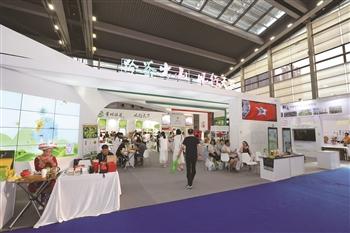 """贵州馆内,以""""黔茶出山・风行天下""""为主题的茶产业展示区。"""