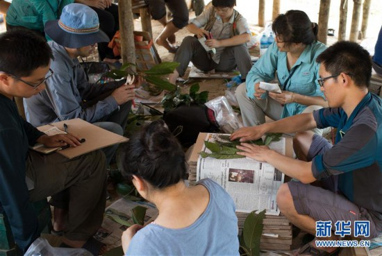 (国际)(1)中缅在缅北开展联合科考