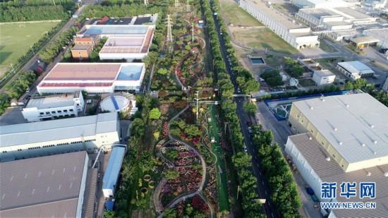 (环境)(3)天津:盐碱地变植物资源库