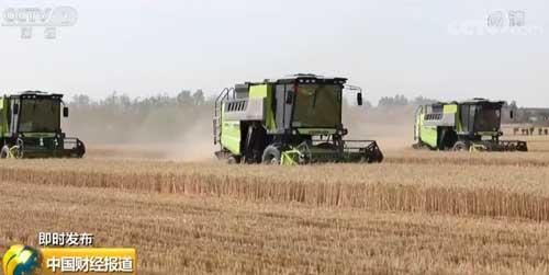 大发888黄金版官网部:全国将投入64万台联合收割机参与小麦机收