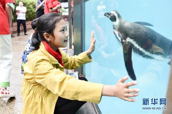 重庆:城市畅游 感受山城新魅力