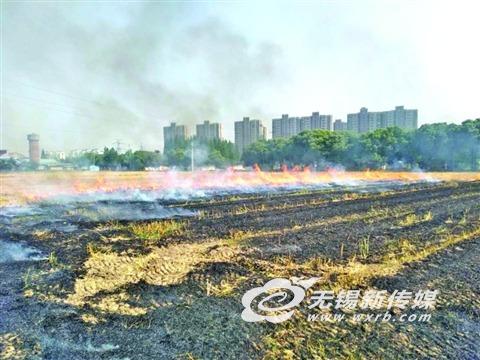 无锡夏收季秸秆焚烧警情频发 消防提醒防止人为造成火灾
