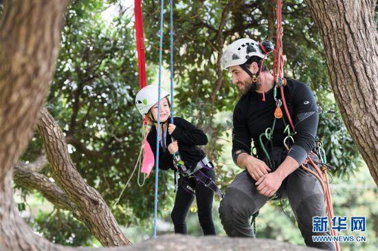 (國際)(1)新西蘭:兒童周末爬樹體驗