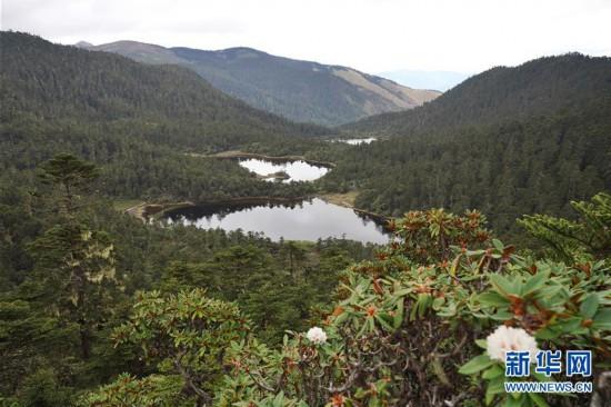 (环境)(1)世界自然遗产 壮美老君山