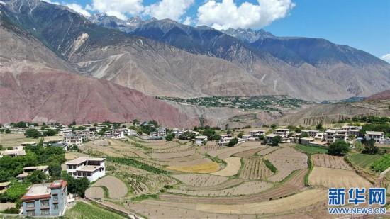 走进西藏红酒之乡芒康县纳西民族乡