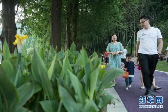 (环境)(1)城市绿道成为休闲好去处