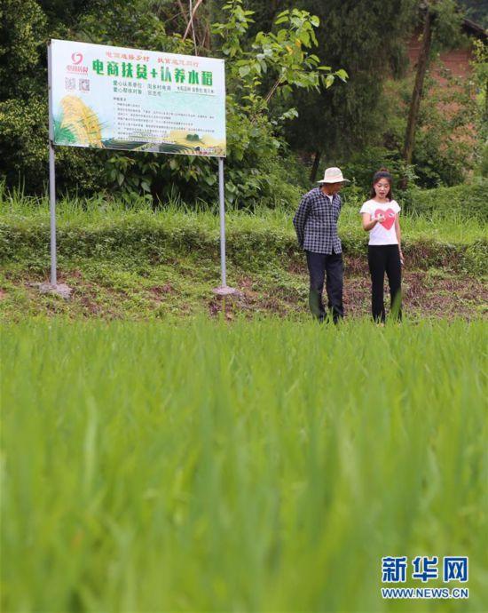 """(图片故事)(2)""""新农人""""魏先曼:""""农业很有奔头"""""""