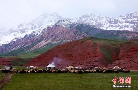 新疆高海拔山区牧民夏季转场 民警全程护送