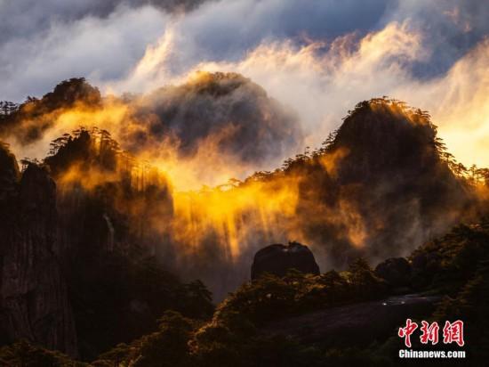 安徽黄山现云海景观 云浪金辉熠熠