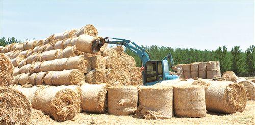 沛县推广秸秆机械化还田 进一步改善环境质量