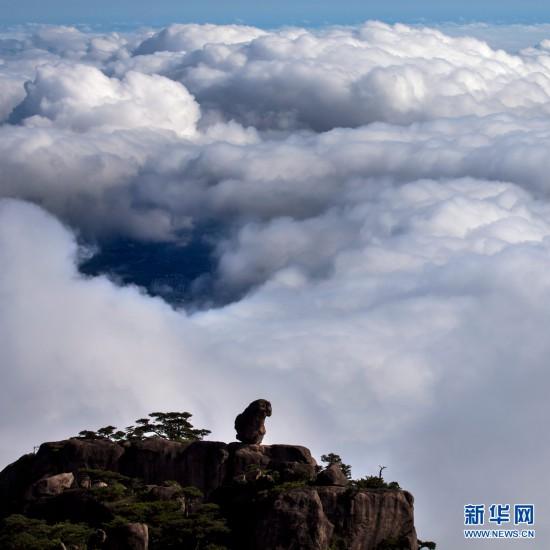 黄山:石猴观海