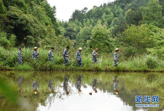 (图片故事)(1)一片林・一群人・40年守护