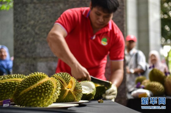 (国际)(1)马来西亚首批冷冻带壳猫山王榴莲发往中国