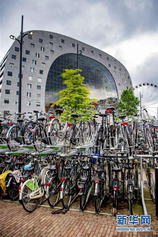 (国际・北京世园会)(1)荷兰城市的绿色生活