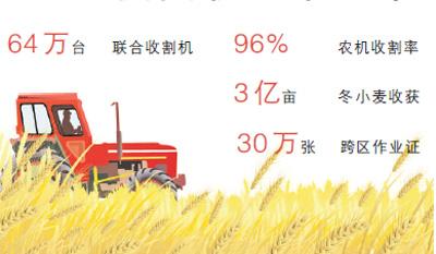 大規模麥收基本結束 陜西等主產區相繼告捷