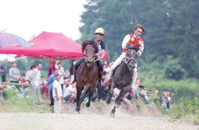 贵州丹寨乡村赛马竞技酣
